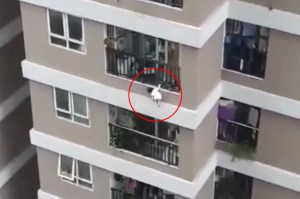 Vietnamese driver hailed as hero for catching a girl who fell off the balcony