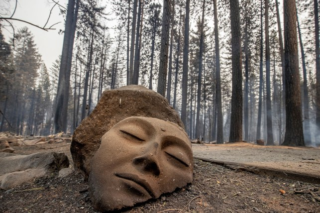 A statue stands in front of a Grizzly Flats house destroyed by a Caldor fire in El Dorado County, California on Tuesday, August 17, 2021.