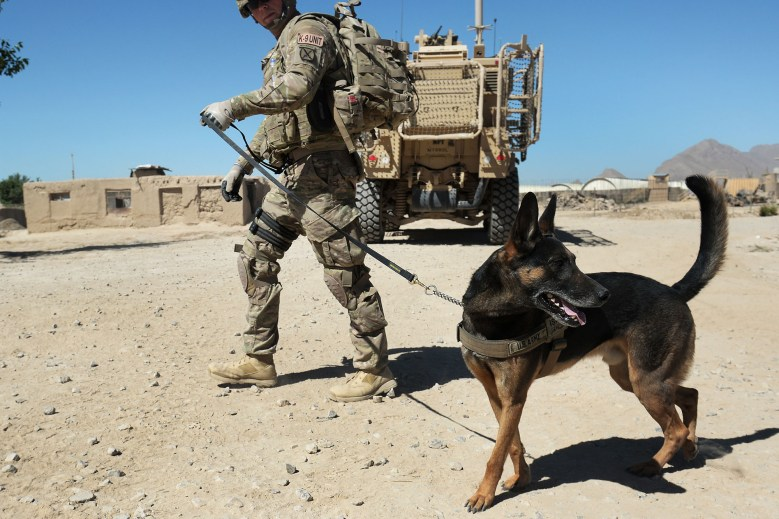 The American Humane society slammed Biden for leaving the contract dogs behind in Afghanistan.
