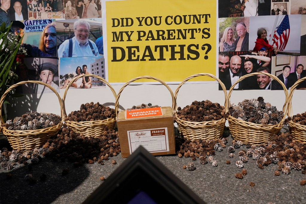 a box with the cremated ashes of Dnynia Armstrong, center, a nursing home COVID-19 victim, surrounded with baskets of pinecones representing other nursing home pandemic deaths, is displayed during a news conference in New York