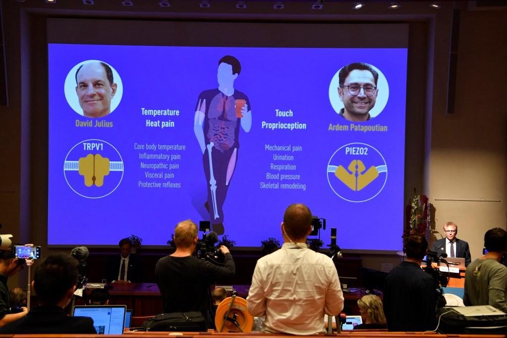 Nobel Committee member Patrik Ernfors, right, explains the 2021 Nobel Prize in Physiology or Medicine during a press conference at the Karolinska Institute in Stockholm, Sweden.