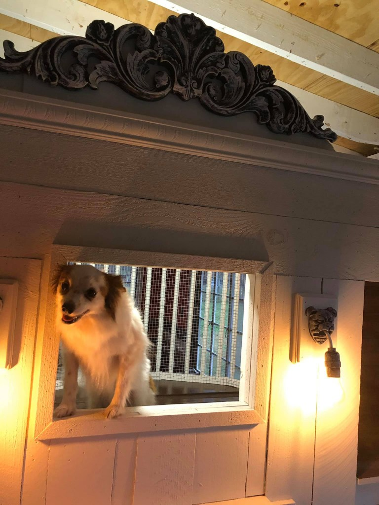 """""""There are windows all around the mansion so they can always see out and I pull the shades down during the sun and I pull them up when the sun goes down,"""" said Elliott."""