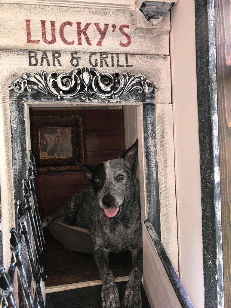 """A door on the second floor to """"Lucky's bar and grill"""" allows her to clean or to """"get the dogs out if they don't want to come down the ramp,"""" she said."""