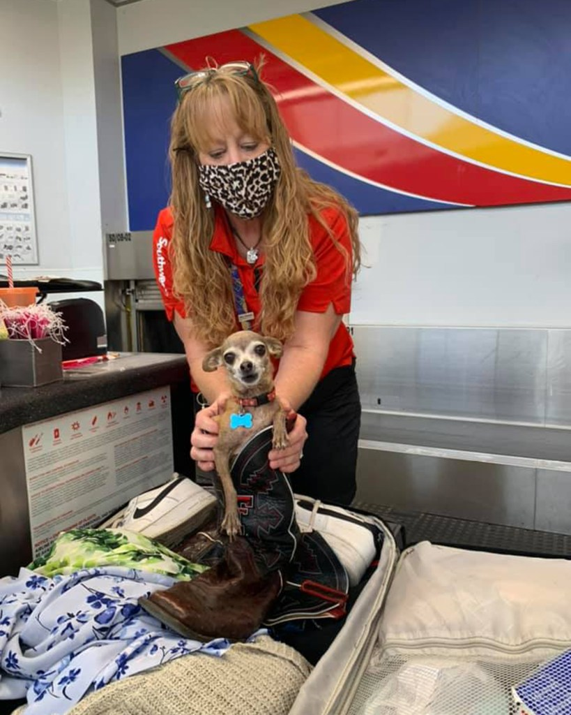 Icky was removed from the luggage after Southwest Airlines questioned the weight of the couple's bag.