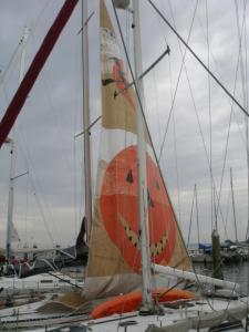 halloween_sail