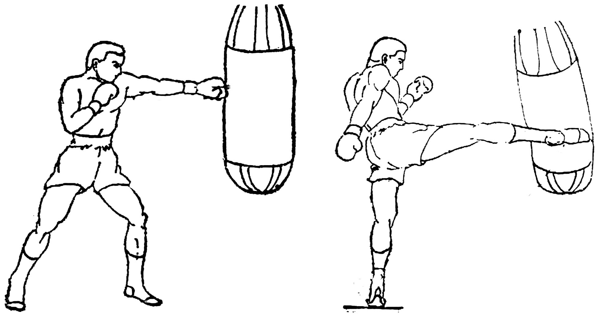 Boxing Punching Bags