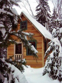 Small Cabin in the Woods.