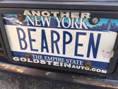Bearpen-License-Plate