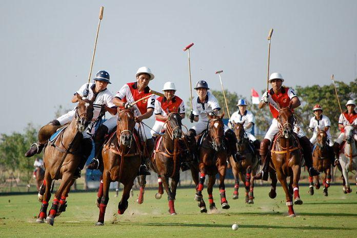 Polo-Berkuda-Cabang--Olahraga-Yang-Sempat-Mati-50-Tahun-2