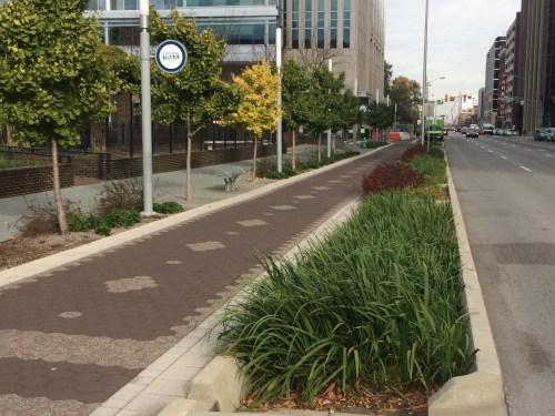 rain-gardens-downtown