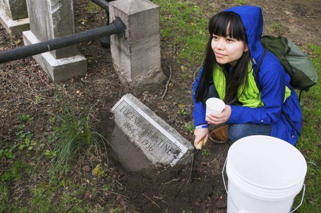 cemetery planting