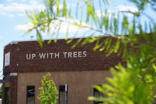 Up With Trees office