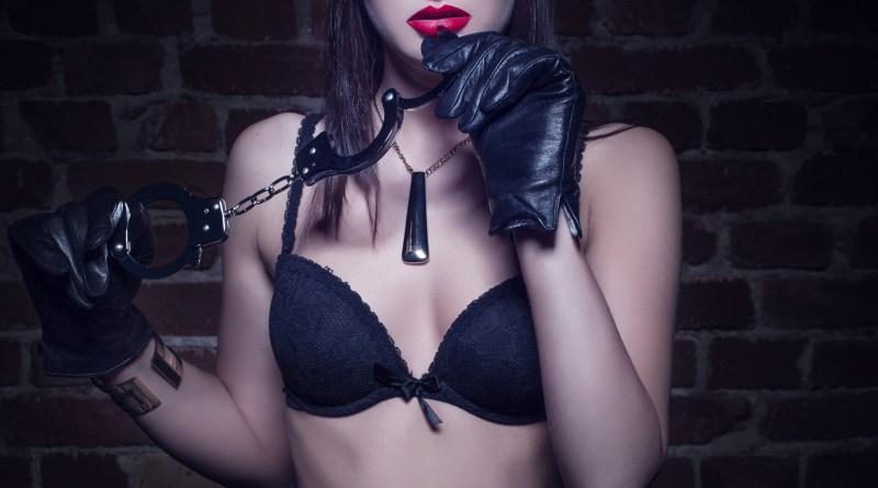 Erotikbloggen: Hvad bliver mon det næste?