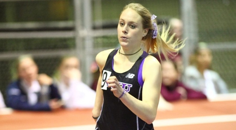NYC Gotham Cup a Tune-Up for Violet Track