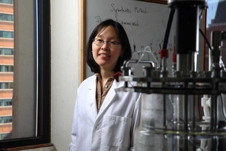 NYU Tandon associate professor Jin Kim Montclare has been named a 2016 Rising Star of chemical engineering.