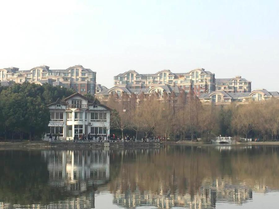 A view of the lake at Jinqiao Park in Shanghai near the Jinqiao Residence Hall.