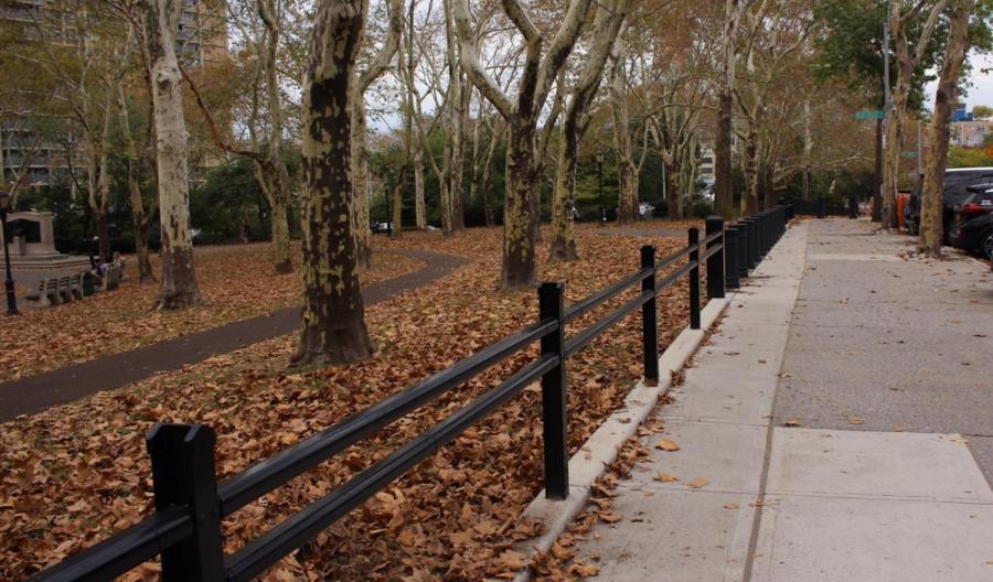Leaves change color in Central Park.