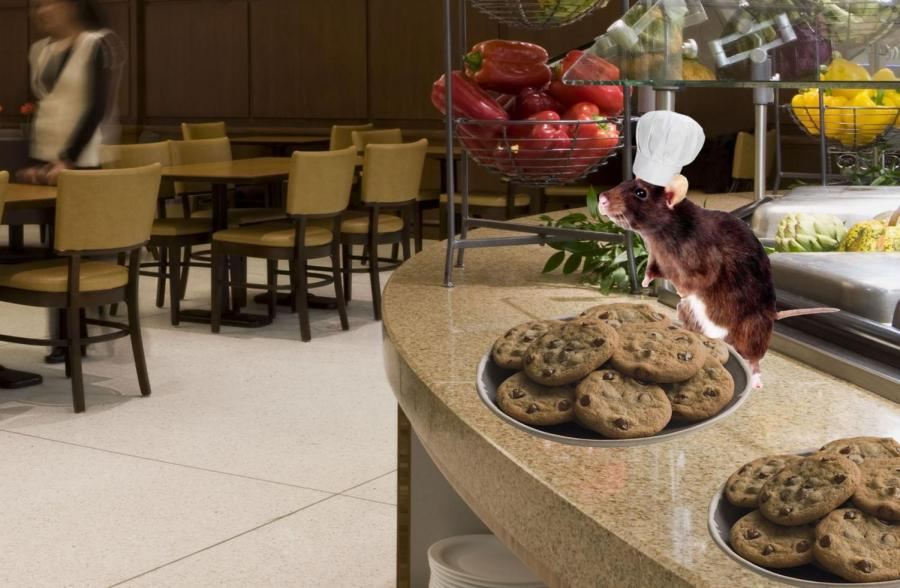 Bertram and his famous chocolate-chip cookies