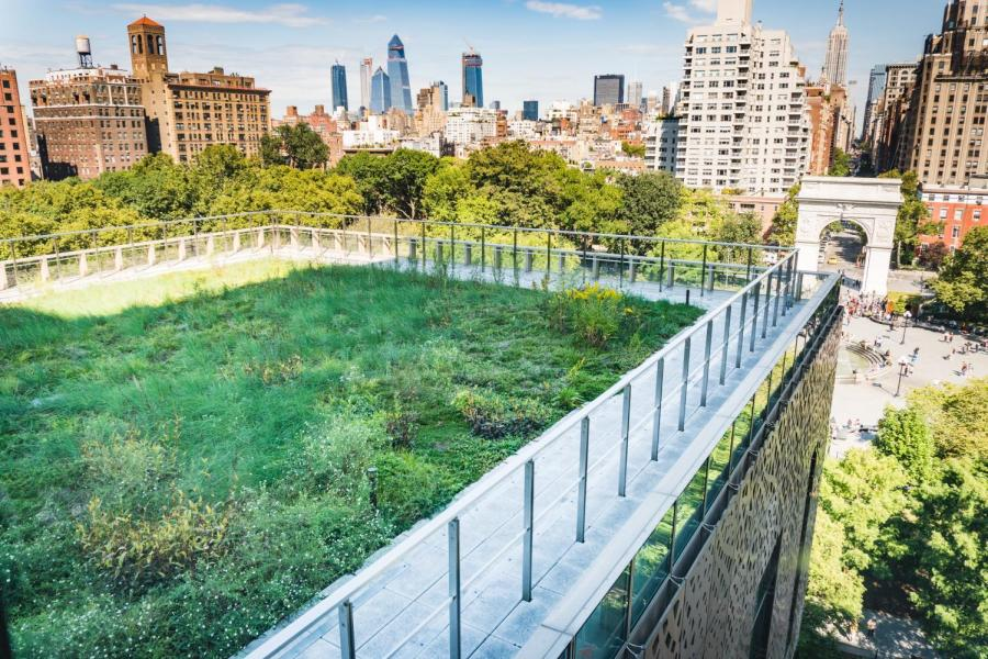 238 Thompson Rooftop Garden, one of NYU's landscaping projects, sits on top of the Global Center for Academic and Spiritual Life. (Staff photo by Tony Wu)