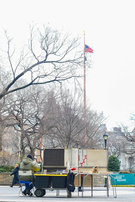 NYU Carlyle Court