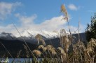Lake Te Anau and Fiordland mountains in the distnace