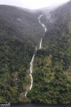 Lots and lots of waterfalls in Doubtful Sound