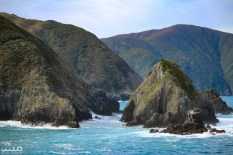 This was the view as we were finally exiting Marlborough Sounds. You can see that immediately the water is rougher, crashing up on the rocks.