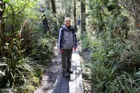 The Taranaki Falls hike also went through some forest. It was like an oasis in the middle of the desert land. Here's Jessica on one of the boarded paths.