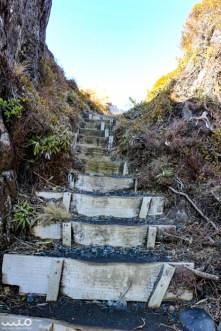 Steps to the top of Taranaki Falls