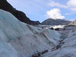 フォックスグレイシャー半日氷河トレッキング