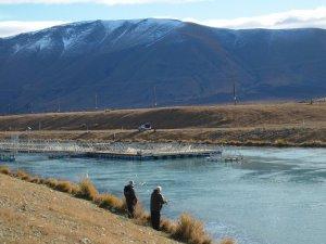 ohau canal salmon farm