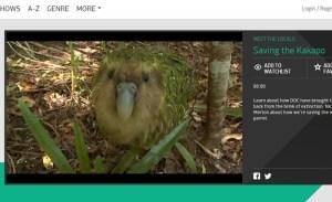 KakapoTVNZVideo