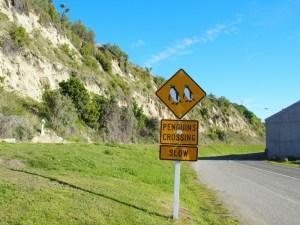 オアマルペンギン横断注意道路標識