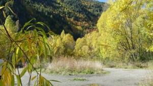 アロータウンの黄葉アローリバー