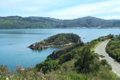 Matiu/Somes Island