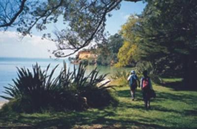Awhitu Regional Park