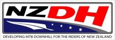 NZDH Logo Landscape 2 - final