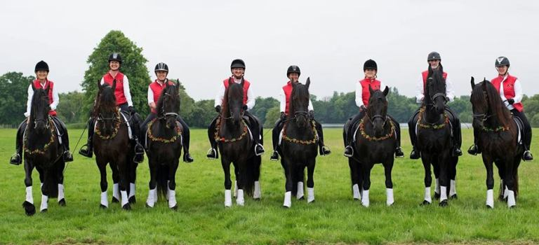 Join the Friesian Drill Team!