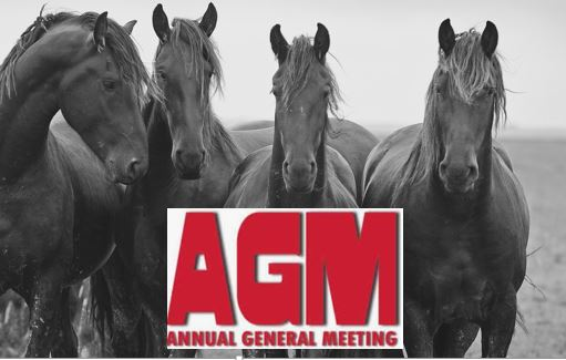 NZFHS Inc. AGM  Saturday 25th of May 2019
