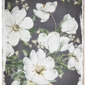 JC38648  Magnoia Blooms Canvas Print