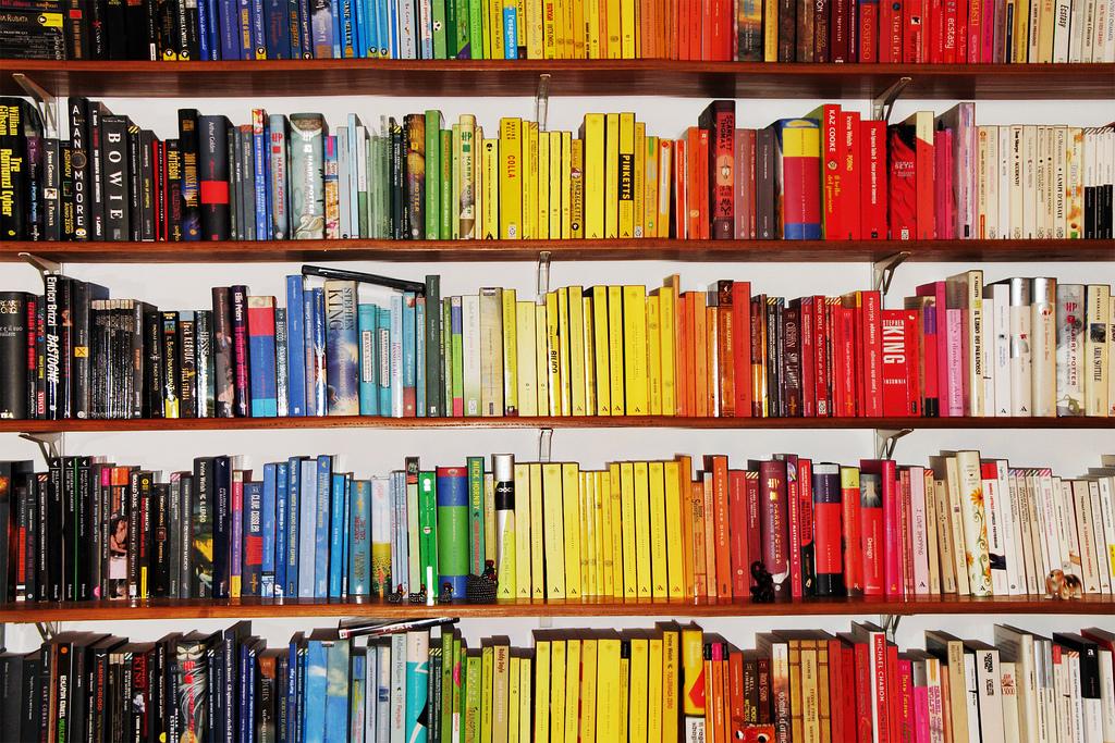 lifelong love of reading colour coded bookshelf