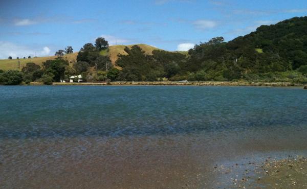 tawharanui lake