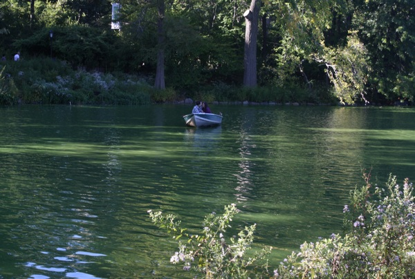 couple in boat central park