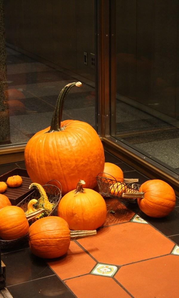 Halloween pumpkins in store window