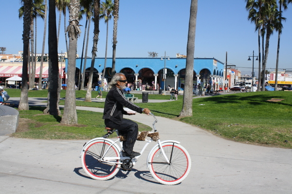 venice beach california nzmuse