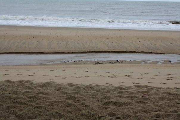 ellis beach queensland