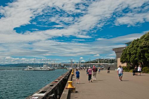 Sunday at Wellington Harbour
