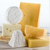 FAQ Cheese