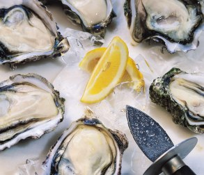 oyster-pic-1