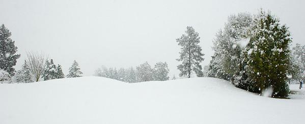 Snow_2012-06-06_13-34-37__DSC1230_©RichardLaing(2012)